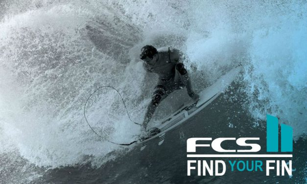FCSII Find Your Fin